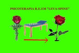 metodologia levaspine